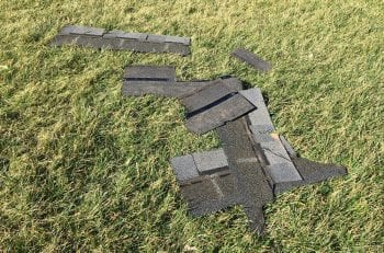 Shingles in yard
